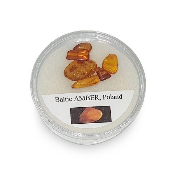 Amber specimens